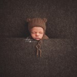 baby-bear_web
