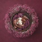 purple-wreath_web